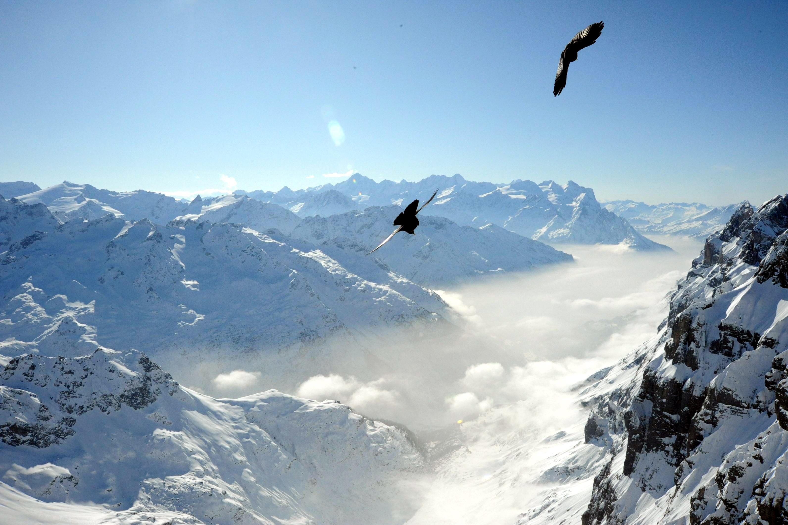 瑞士留学:学英语的心得