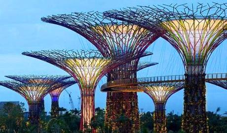 新加坡留学反签证申请材料