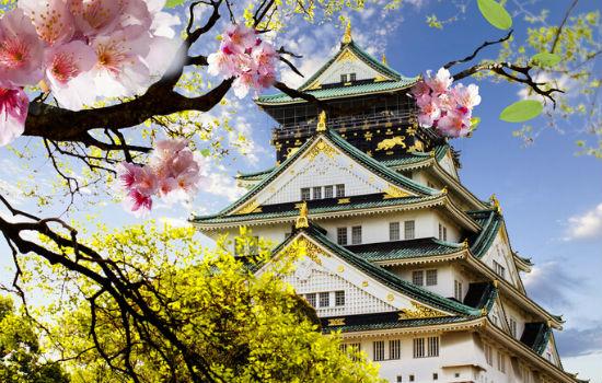 在日本一不小心护照过期了,该怎么补办?