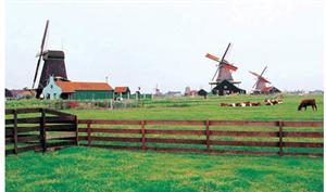 荷兰硕士留学费用和申请条件一览表