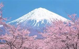 日本研究生留学三大要求解读