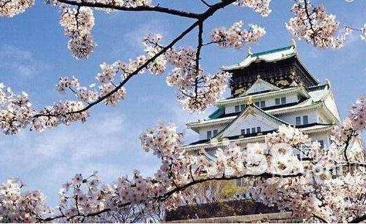 留学生如何在日本考大学
