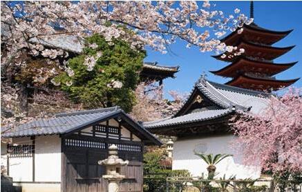 日本留学—7月生最新要求