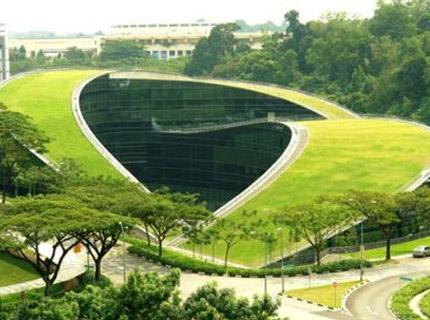 新加坡南洋理工大学办学模式如何