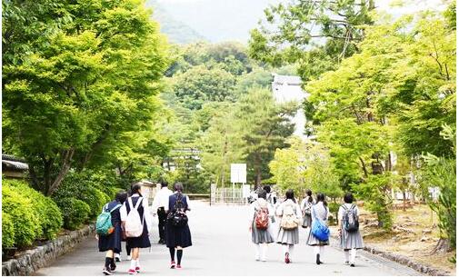 日本留学中介哪个好?日本留学如何选择好中介