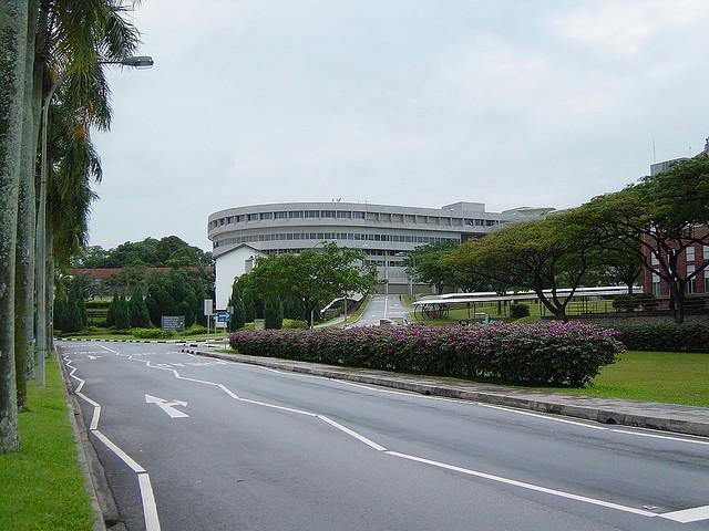 新加坡留学中介费用,究竟需要多少?