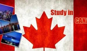 值得一看的加拿大留学新政策
