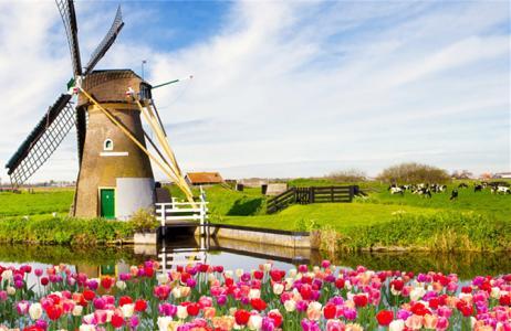 荷兰读研究生一年费用以及荷兰留学的优势