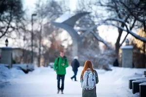 加拿大名校商科硕士录取要求到底有多高?