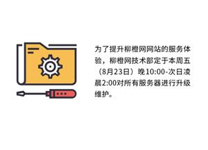 柳橙网服务器升级维护通知
